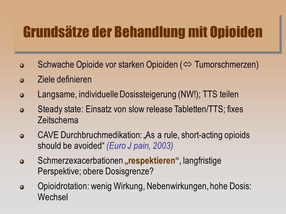 Grundsätze der Behandlung mit Opioiden