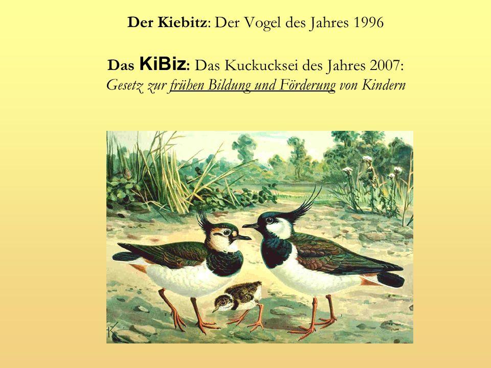 Der Kiebitz: Der Vogel des Jahres 1996 Das KiBiz: Das Kuckucksei des Jahres 2007: Gesetz zur frühen Bildung und Förderung von Kindern