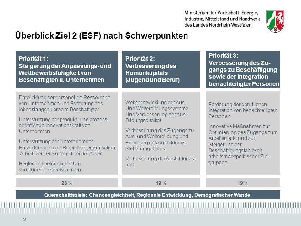 Überblick Ziel 2 (ESF) nach Schwerpunkten