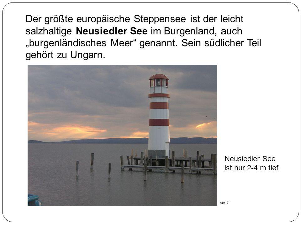 """Der größte europäische Steppensee ist der leicht salzhaltige Neusiedler See im Burgenland, auch """"burgenländisches Meer genannt. Sein südlicher Teil gehört zu Ungarn."""