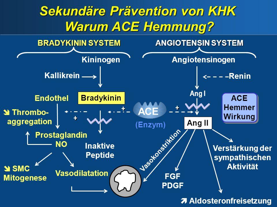 Sekundäre Prävention von KHK Warum ACE Hemmung
