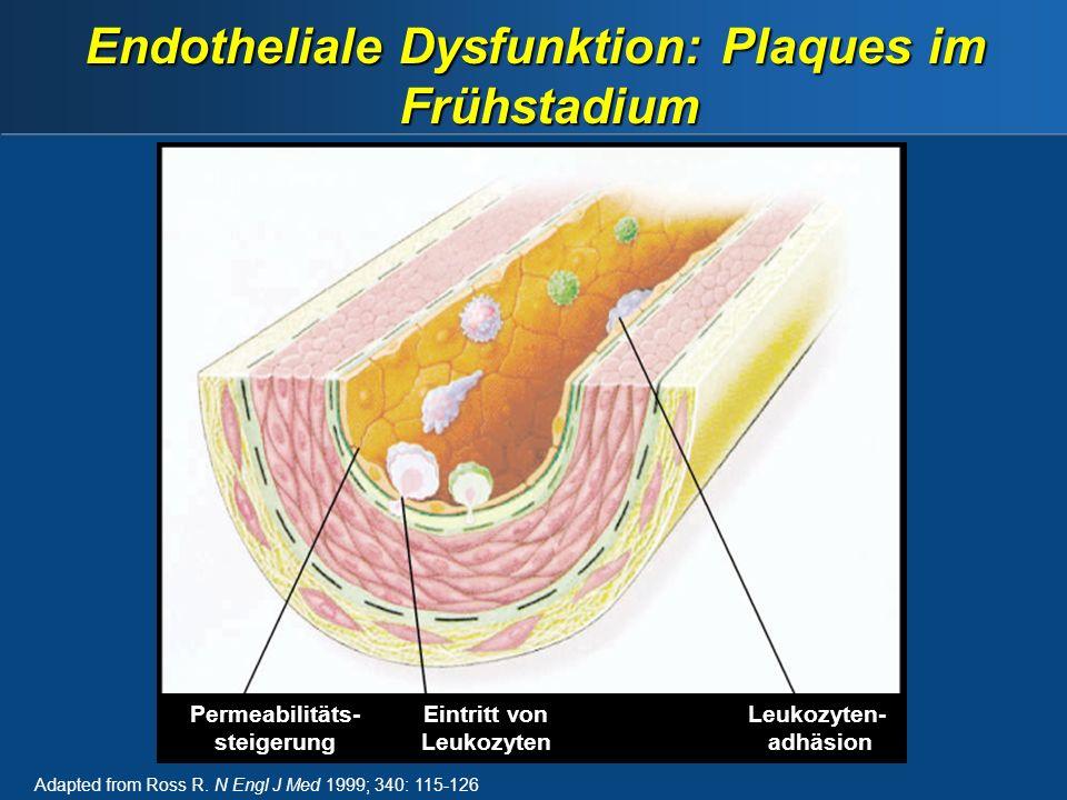 Endotheliale Dysfunktion: Plaques im Frühstadium
