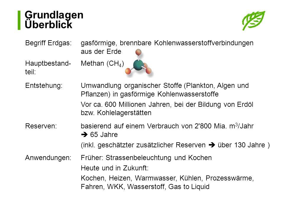 Grundlagen Überblick Begriff Erdgas: