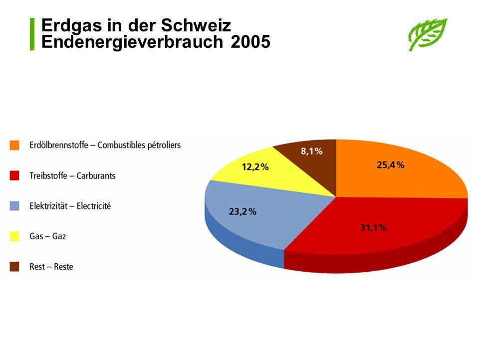 Erdgas in der Schweiz Endenergieverbrauch 2005