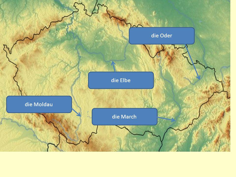 die Oder die Elbe die Moldau die March