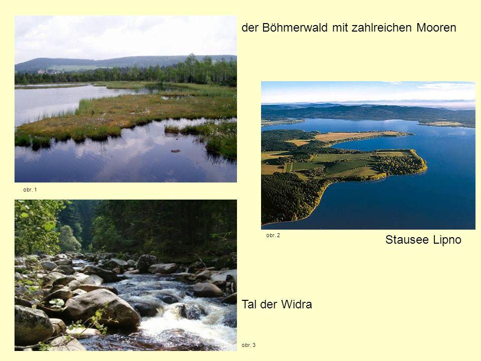 der Böhmerwald mit zahlreichen Mooren