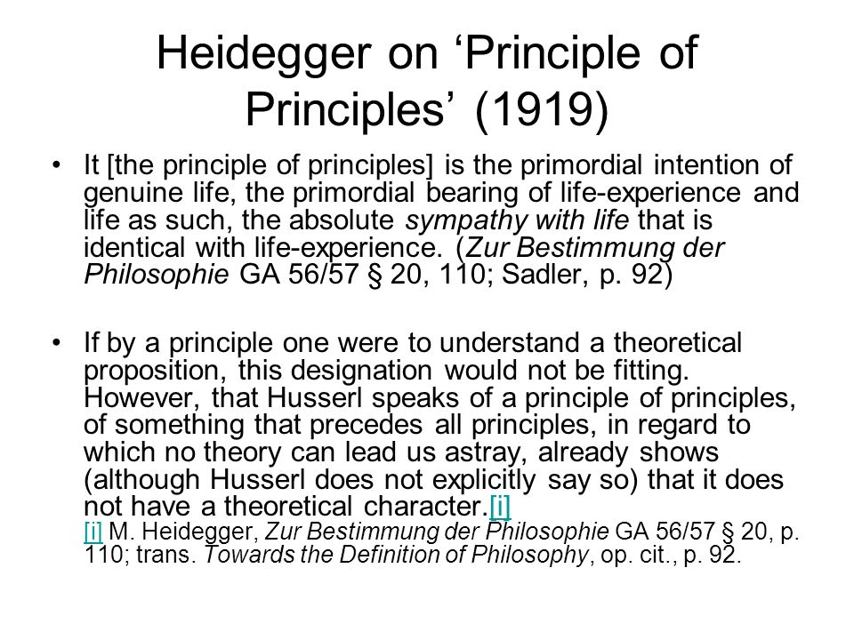 Heidegger on 'Principle of Principles' (1919)