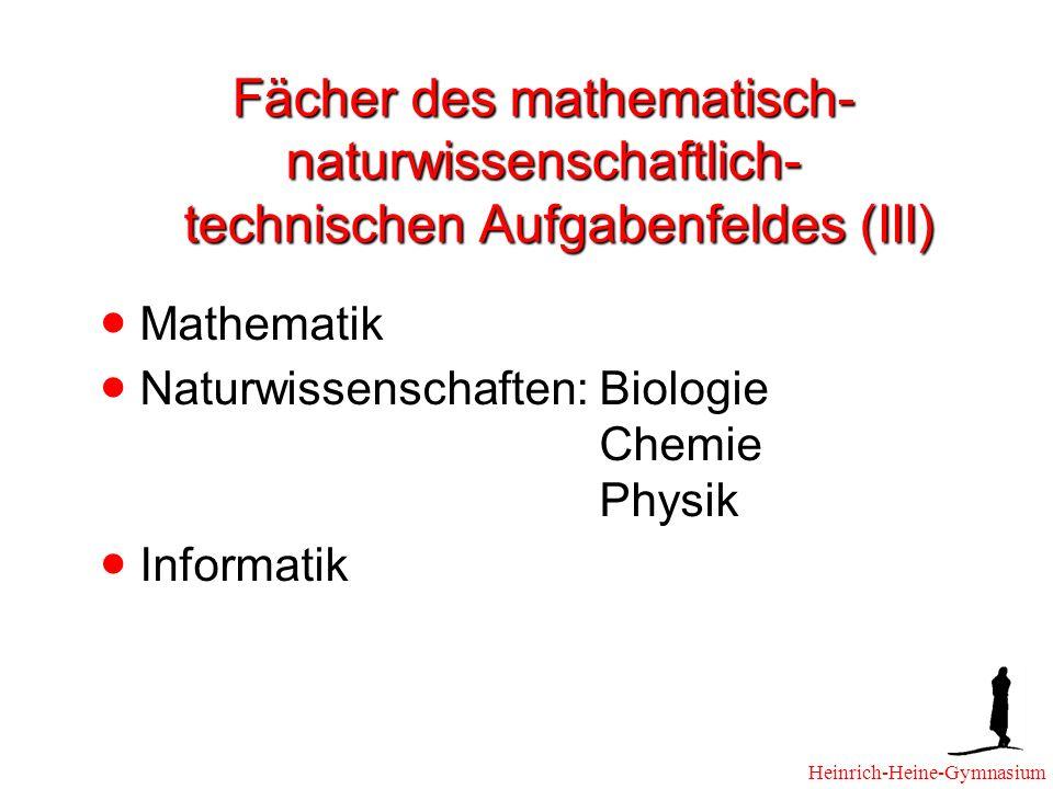 Fächer des mathematisch-naturwissenschaftlich- technischen Aufgabenfeldes (III)