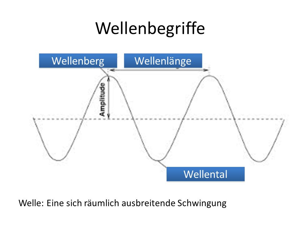 Wellenbegriffe Wellenberg Wellenlänge Wellental