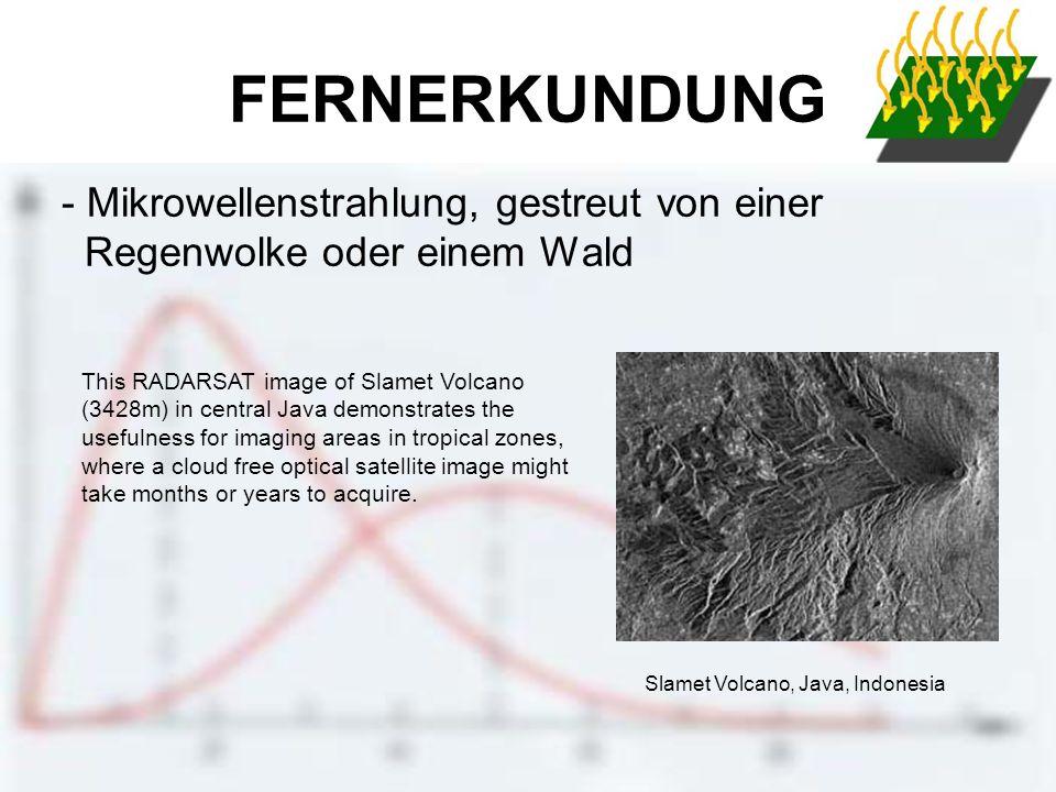 FERNERKUNDUNG - Mikrowellenstrahlung, gestreut von einer Regenwolke oder einem Wald.