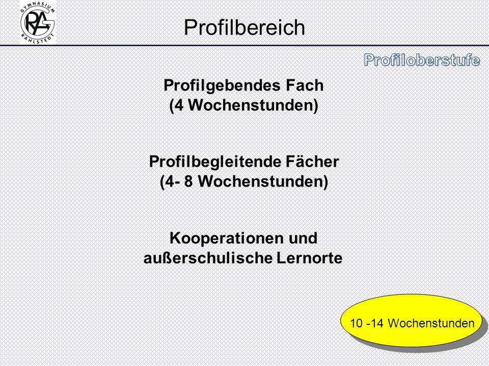Profilbereich Profilgebendes Fach (4 Wochenstunden)