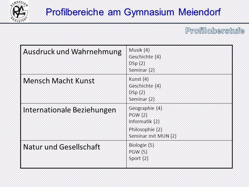 Profilbereiche am Gymnasium Meiendorf