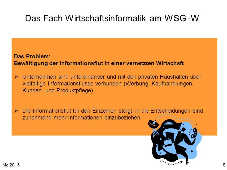 Das Fach Wirtschaftsinformatik am WSG -W