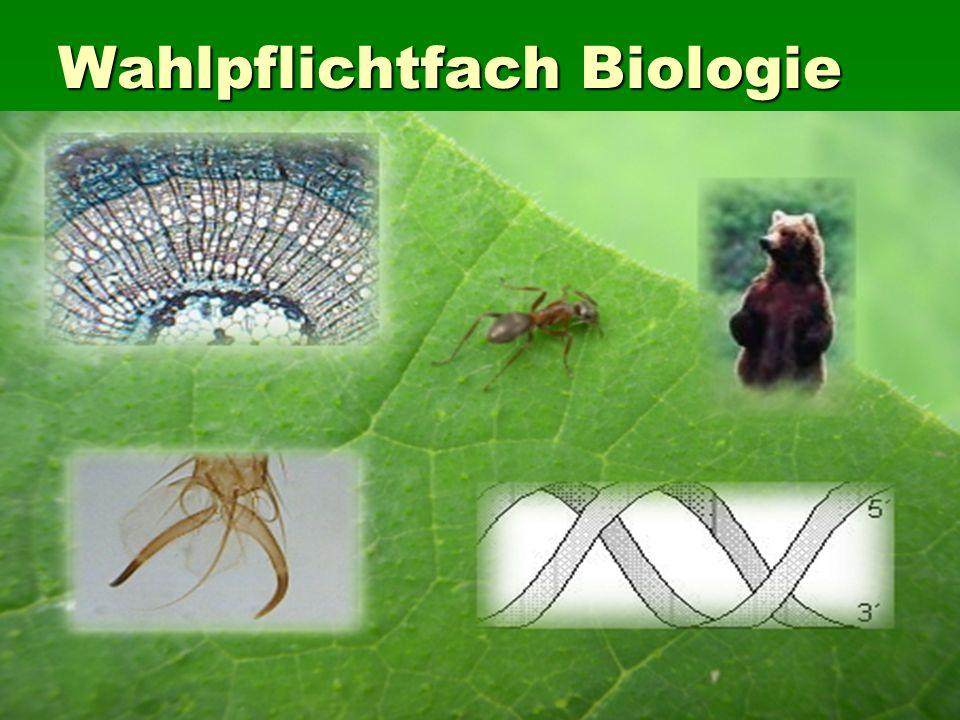 Wahlpflichtfach Biologie