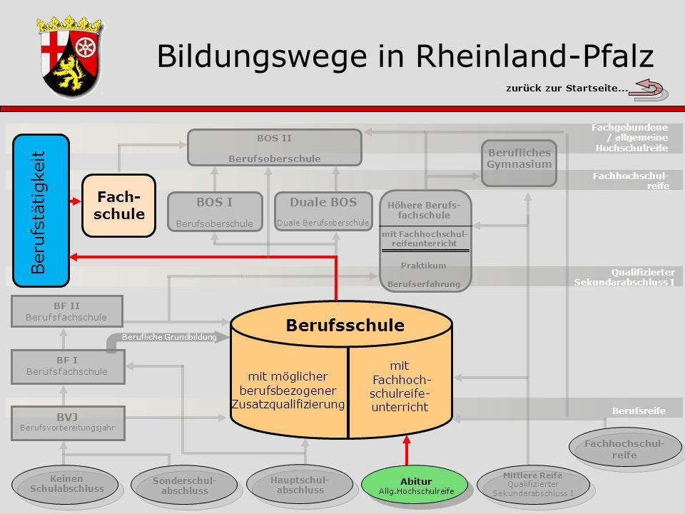 Bildungswege in Rheinland-Pfalz