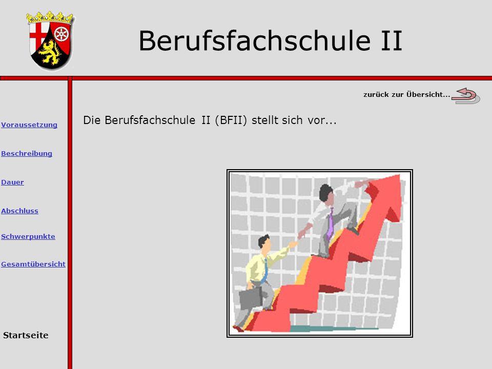Die Berufsfachschule II (BFII) stellt sich vor...
