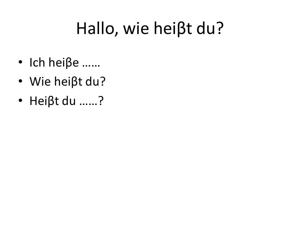 Hallo, wie heiβt du Ich heiβe …… Wie heiβt du Heiβt du ……