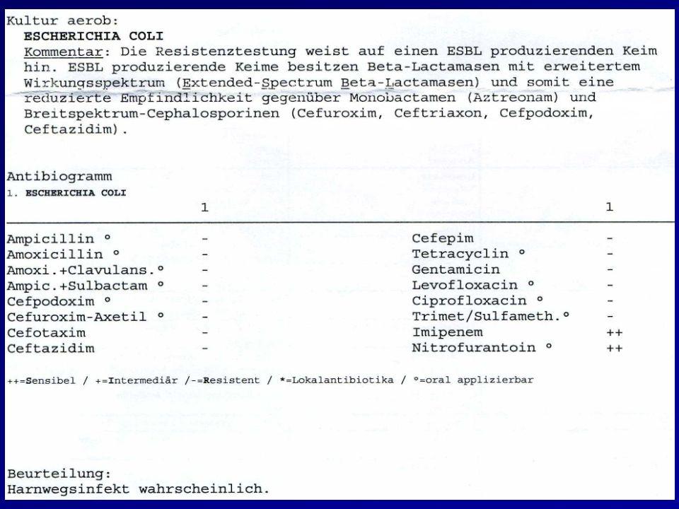 Fall 3 - Komplikationen 2011: wg. persist. Mikrohämaturie urolog. Vorstellung.