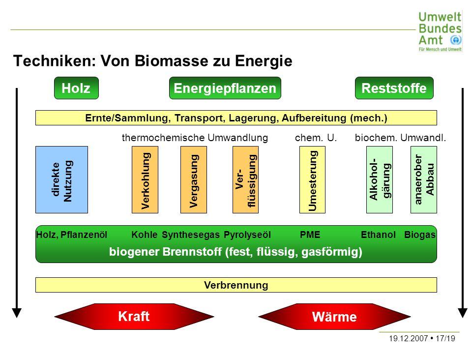 Techniken: Von Biomasse zu Energie