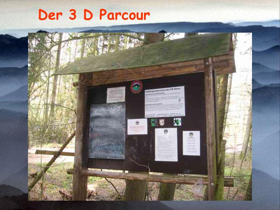 Der 3 D Parcour