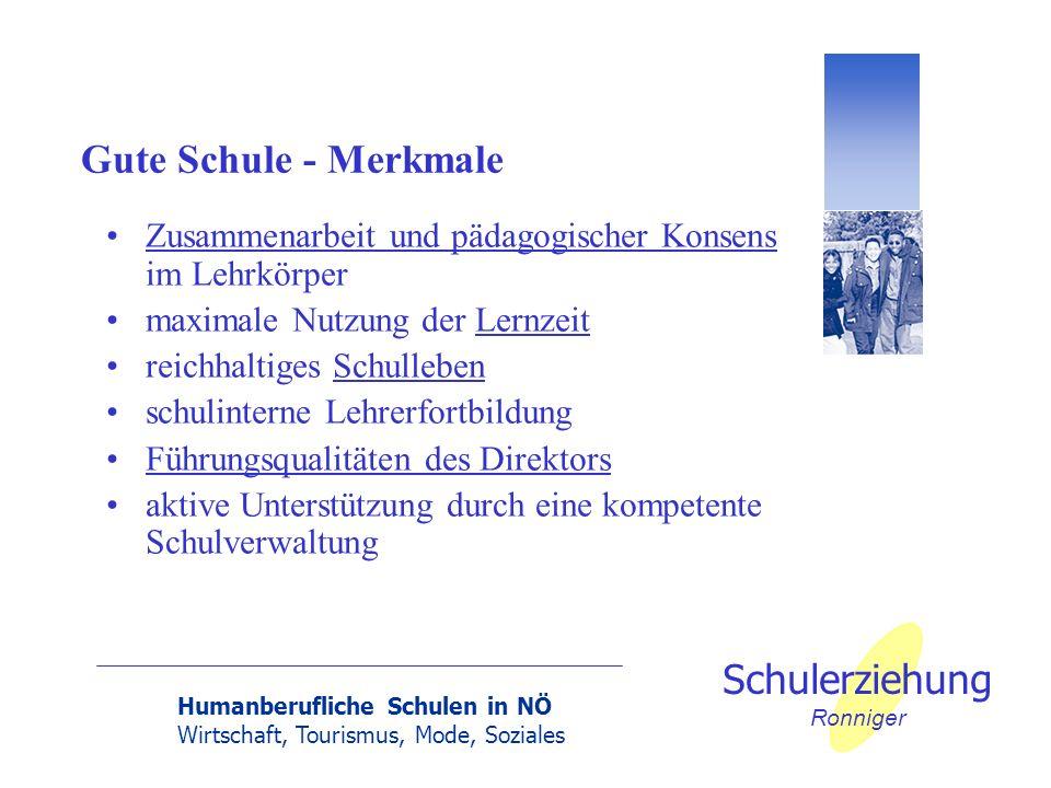 Gute Schule - Merkmale Zusammenarbeit und pädagogischer Konsens im Lehrkörper. maximale Nutzung der Lernzeit.