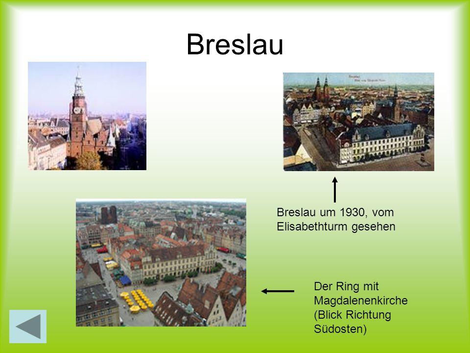 Breslau Breslau um 1930, vom Elisabethturm gesehen