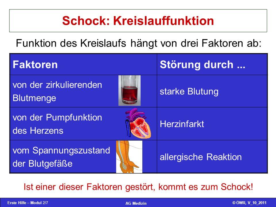 Schock: Kreislauffunktion