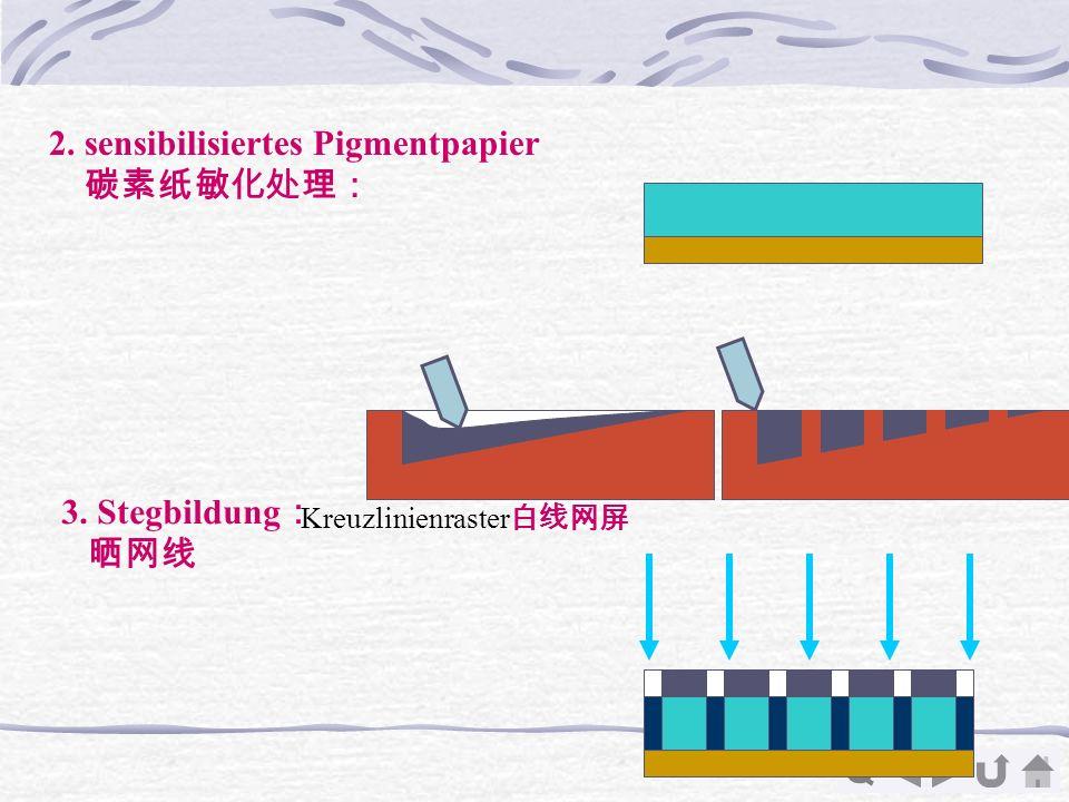 2. sensibilisiertes Pigmentpapier 碳素纸敏化处理: