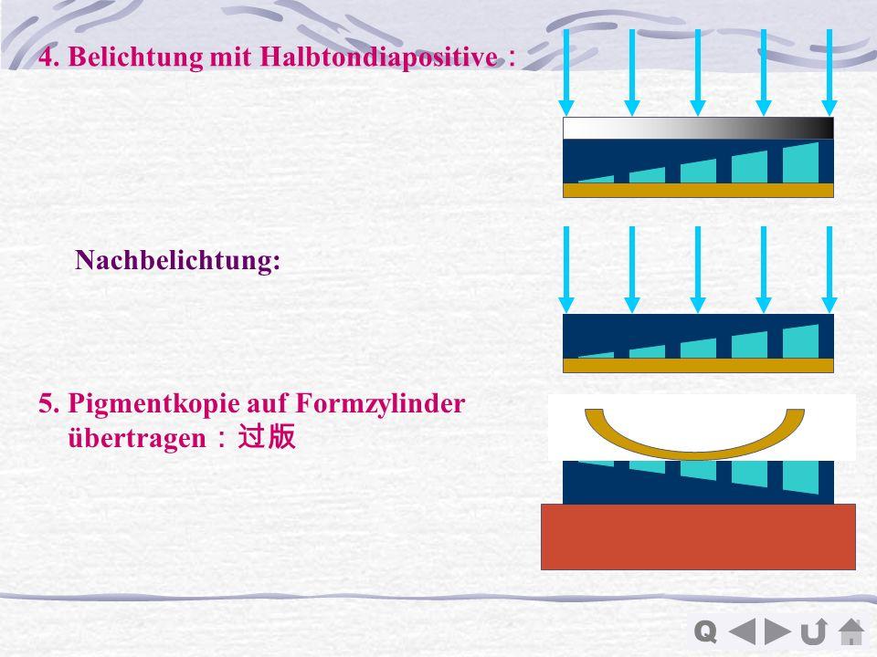 4. Belichtung mit Halbtondiapositive:
