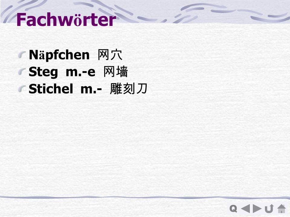 Fachwörter Näpfchen 网穴 Steg m.-e 网墙 Stichel m.- 雕刻刀