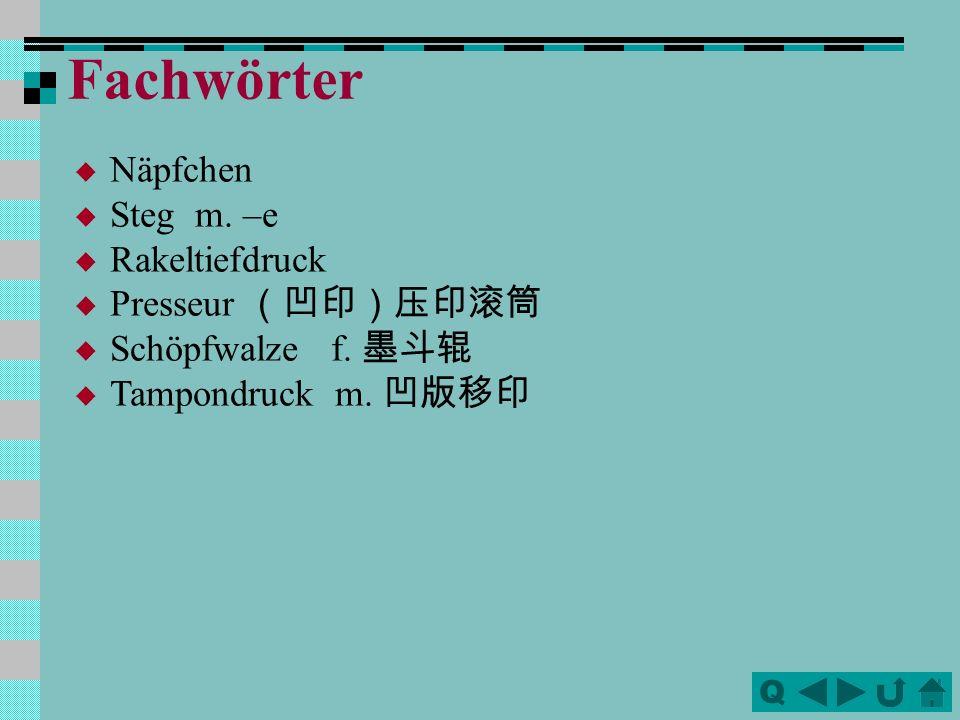 Fachwörter Näpfchen Steg m. –e Rakeltiefdruck Presseur (凹印)压印滚筒