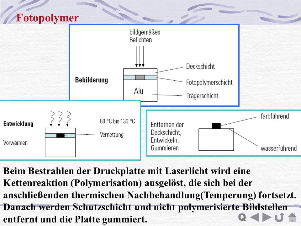 Fotopolymer