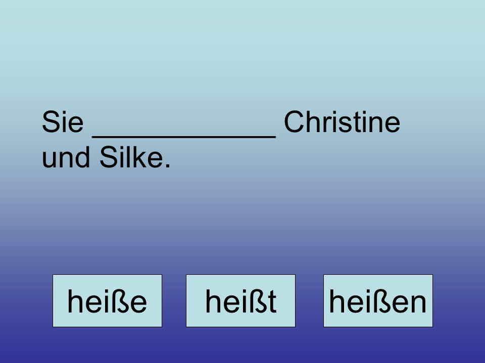 Sie ___________ Christine und Silke.