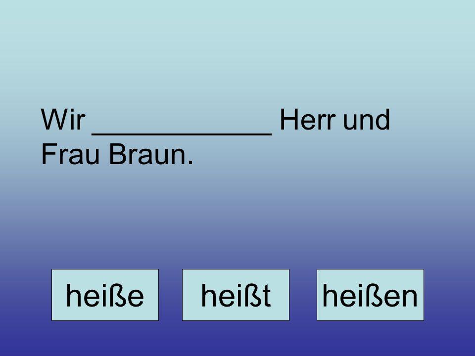 Wir ___________ Herr und Frau Braun.