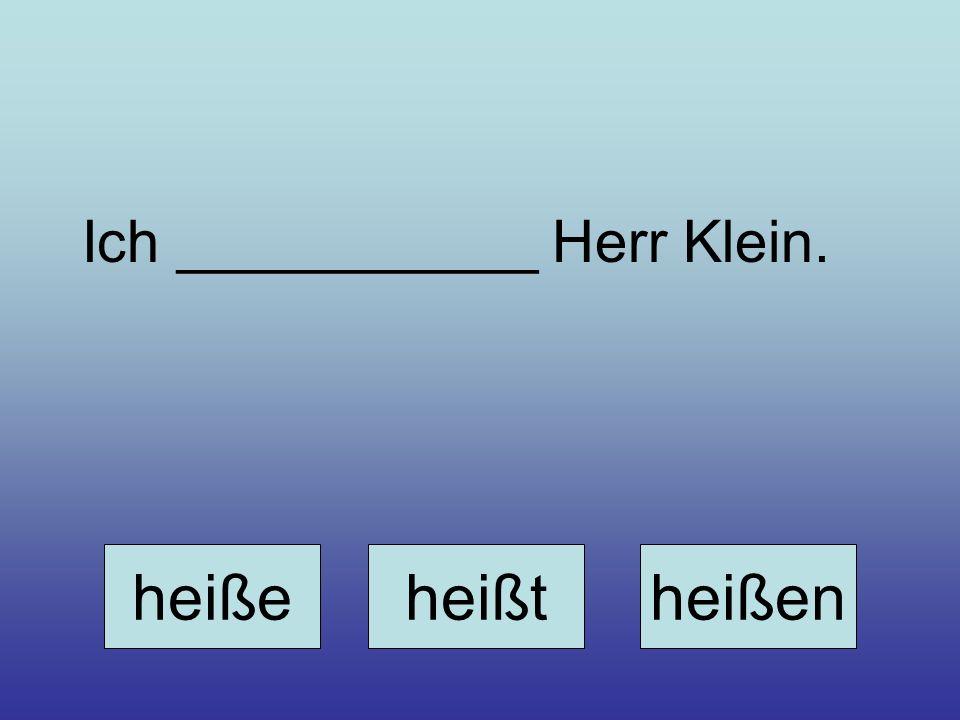 Ich ___________ Herr Klein.
