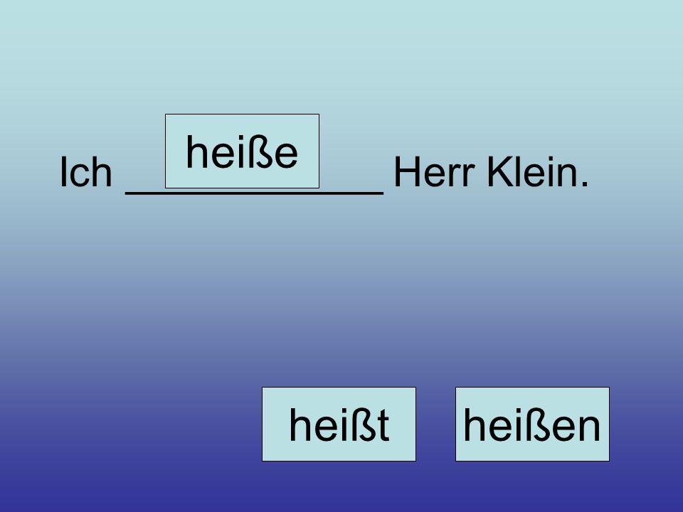 heiße Ich ___________ Herr Klein. heißt heißen