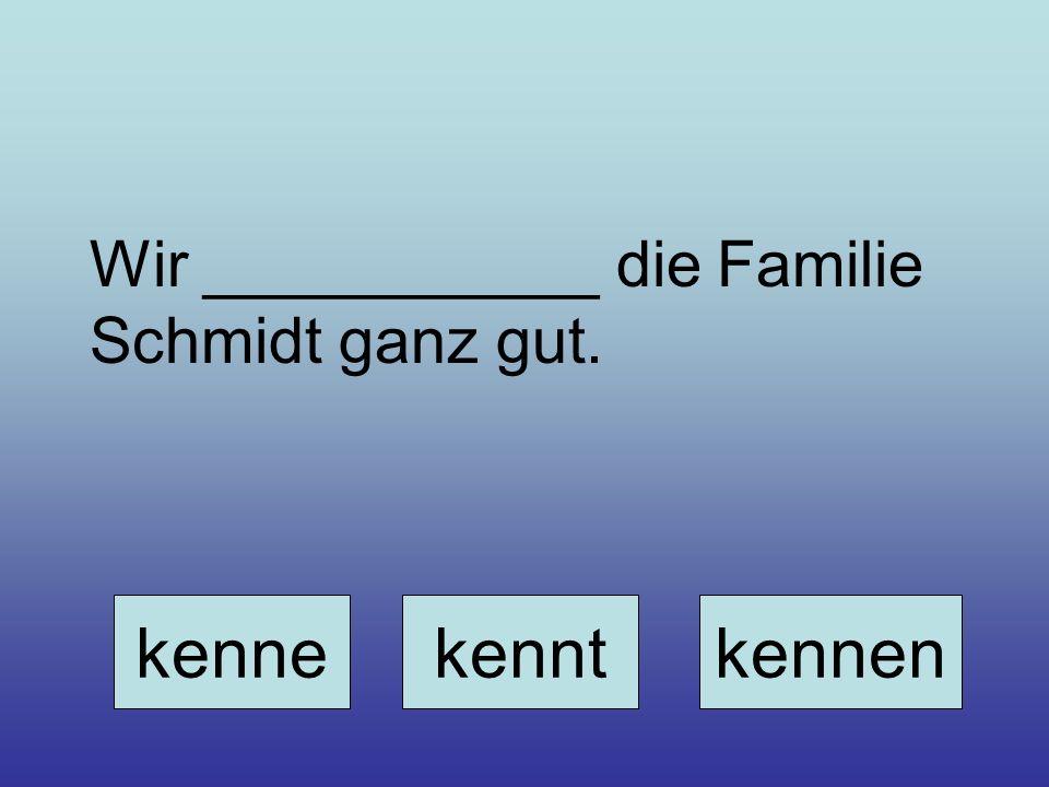 Wir ___________ die Familie Schmidt ganz gut.