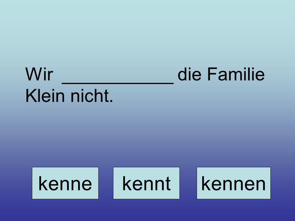 Wir ___________ die Familie Klein nicht.