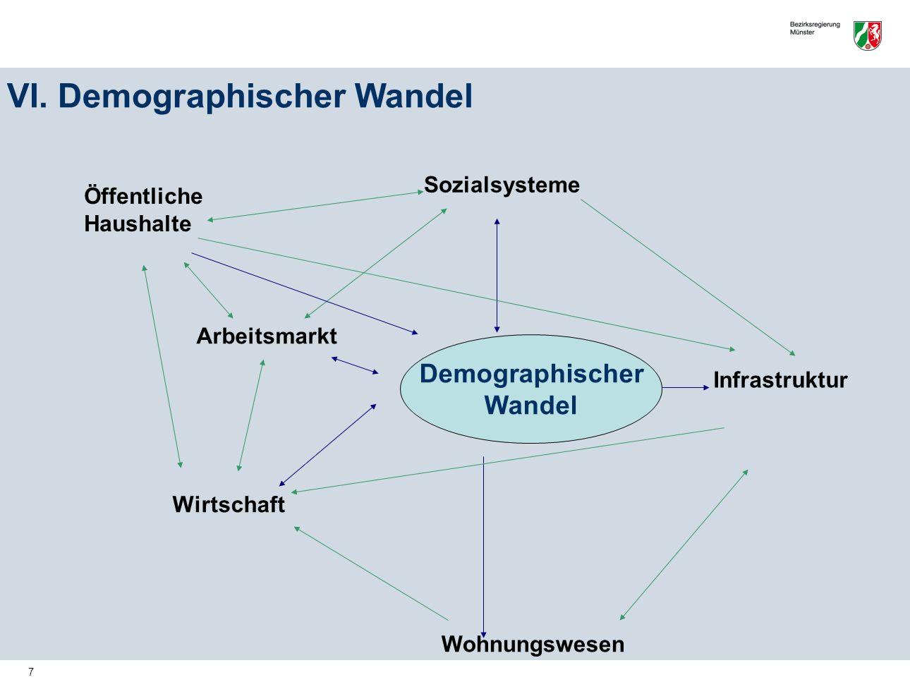 VI. Demographischer Wandel