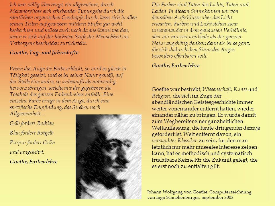 Goethe, Tag- und Jahreshefte