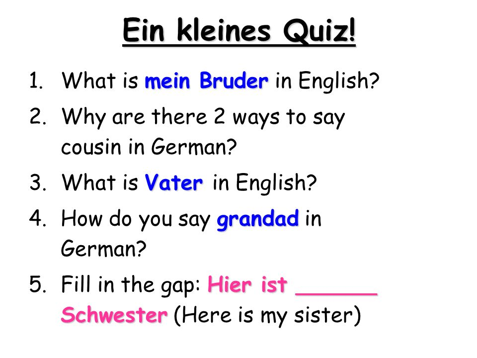 Ein kleines Quiz! What is mein Bruder in English