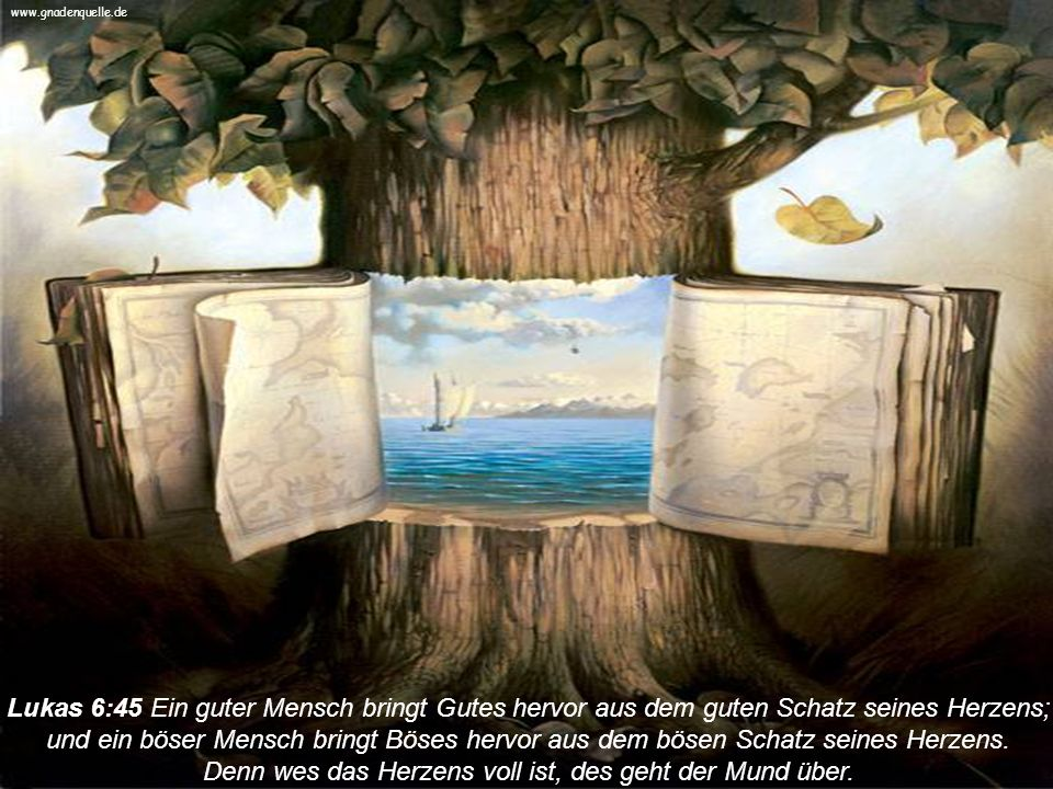 www.gnadenquelle.de