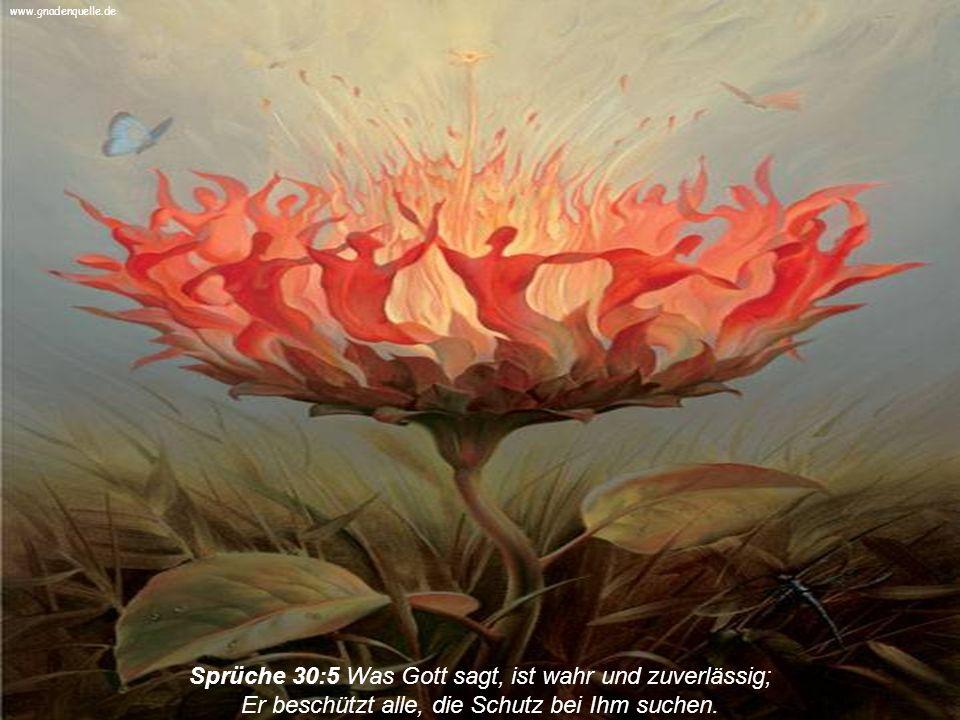 www.gnadenquelle.de Sprüche 30:5 Was Gott sagt, ist wahr und zuverlässig; Er beschützt alle, die Schutz bei Ihm suchen.