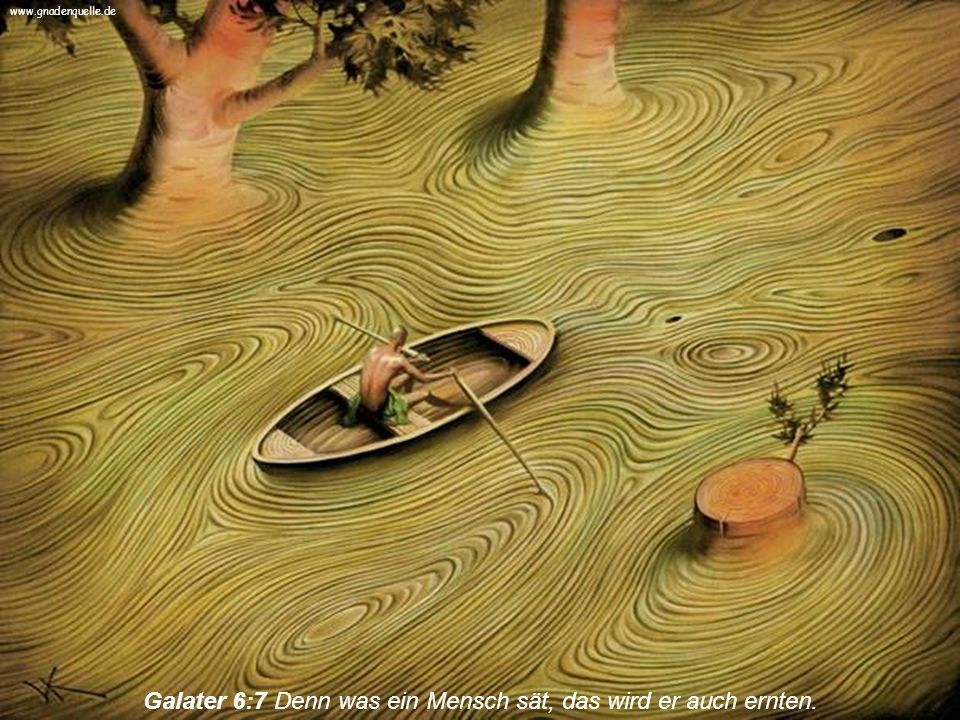 Galater 6:7 Denn was ein Mensch sät, das wird er auch ernten.