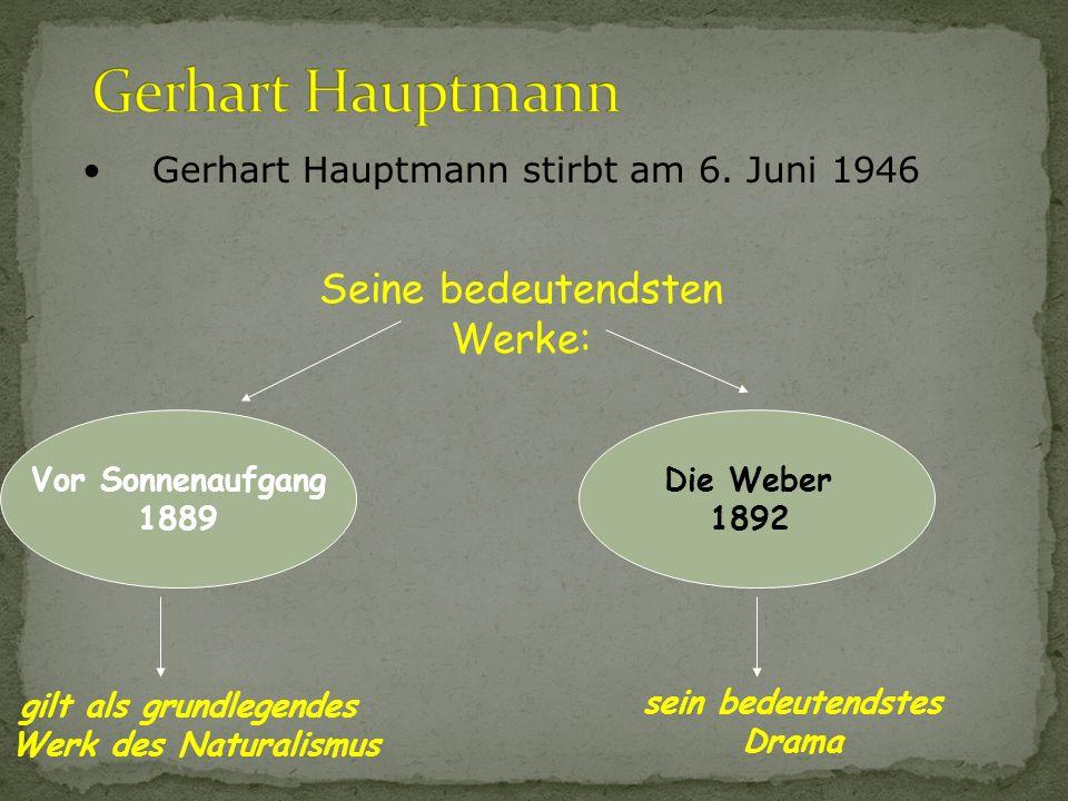 Naturalismus Literatur...