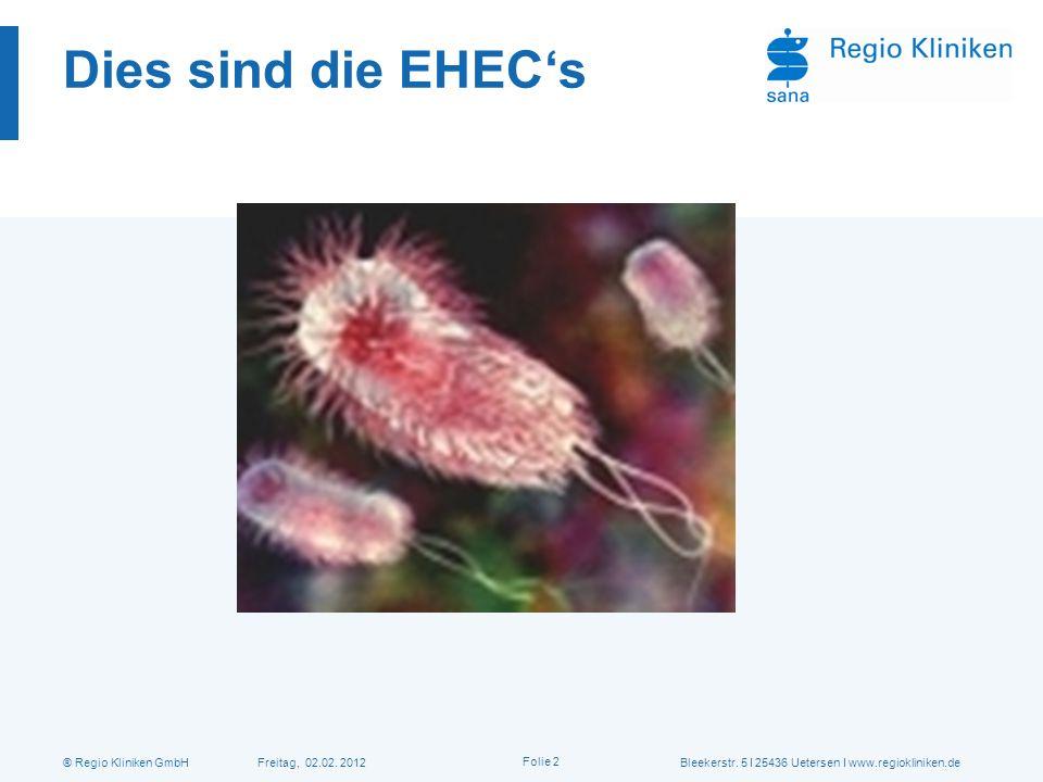 Dies sind die EHEC's