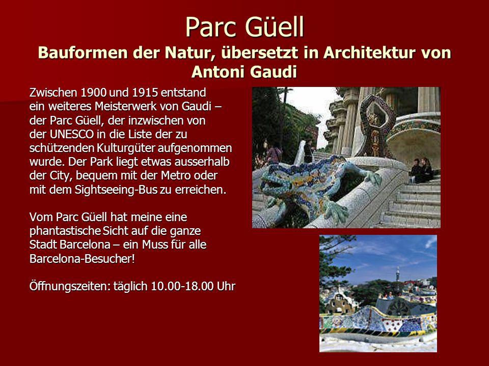 Parc Güell Bauformen der Natur, übersetzt in Architektur von Antoni Gaudi