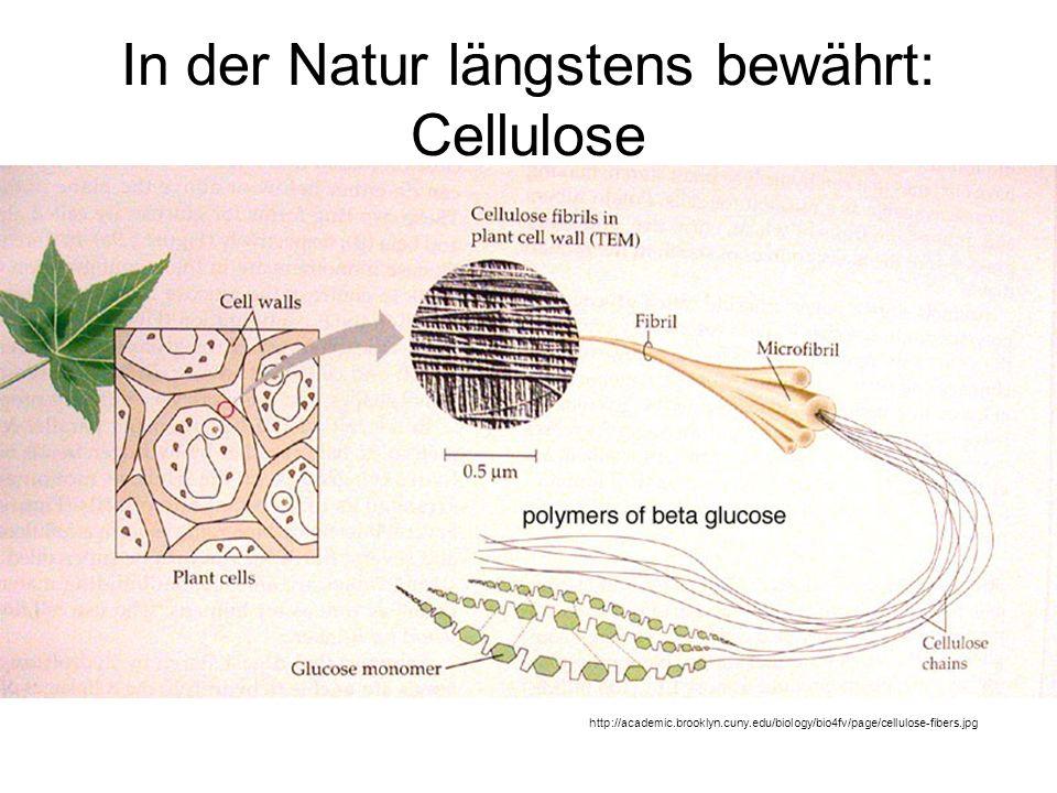 In der Natur längstens bewährt: Cellulose