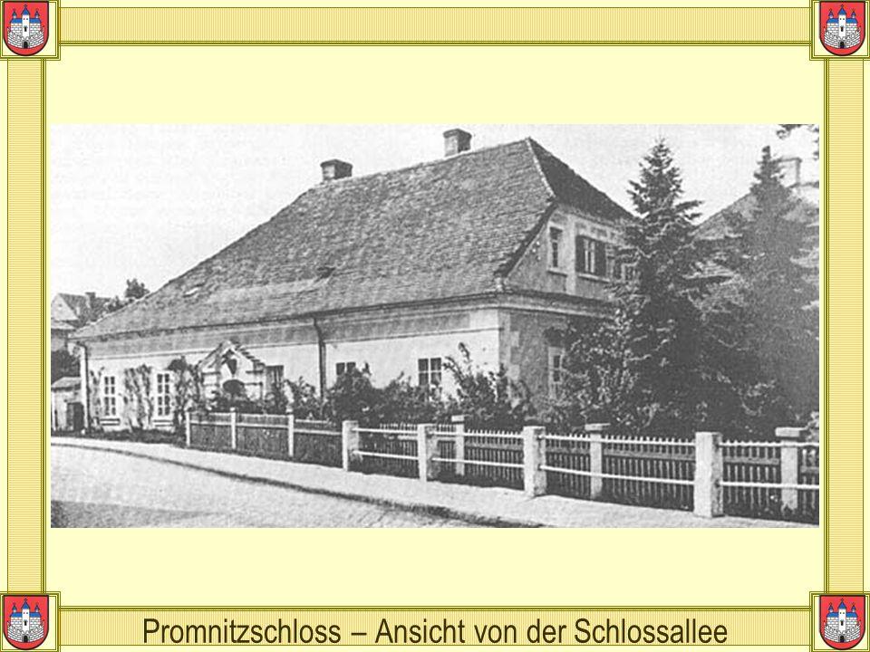Promnitzschloss – Ansicht von der Schlossallee