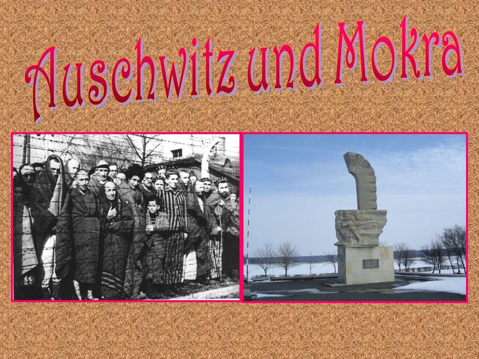 Auschwitz und Mokra